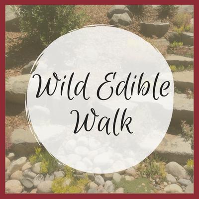 Wild Edible Walk